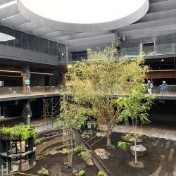 Plaza Cráter en Ciudad De México 1
